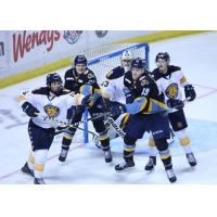 Norfolk Admirals battle the Toledo Walleye