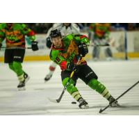 Idaho Steelheads in their Teenage Mutant Ninja Turtles jerseys