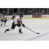Amarillo Bulls Forward Alex Peterson
