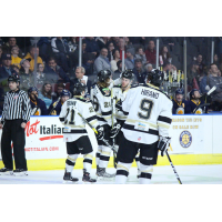 Wheeling Nailers celebrate a goal vs. the Norfolk Admirals
