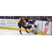South Carolina Stingrays up against the boards