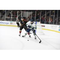 Mike Neville (right) of the Florida Everblades scored the final goal of the game vs. the Atlanta Gladiators on Thursday