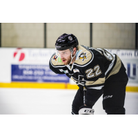 Wheeling Nailers defenseman Kevin Spinozzi