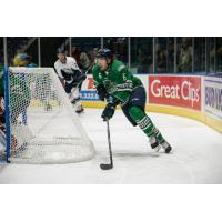 Florida Everblades defenseman Derek Sheppard