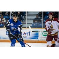 Saint John Sea Dogs vs. the Acadie-Bathurst Titan