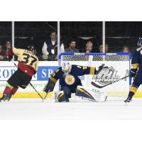 Norfolk Admirals goaltender Ty Reichenbach vs. the Atlanta Gladiators