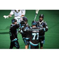 Rochester Knighthawks celebrate during their home opener