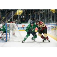 Florida Everblades defenseman Justin Wade (left) vs. the Atlanta Gladiators