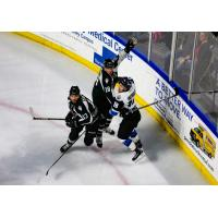 Utah Grizzlies battle the Wichita Thunder