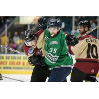 Florida Everblades forward Joe Cox (39) scraps with the Atlanta Gladiators