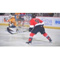 Adirondack Thunder forward Mike Szamatula faces the Norfolk Admirals goaltender