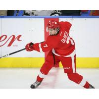 Defenceman Anthony DeMeo with the Sault Ste. Marie Greyhounds
