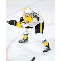 Forward Adam Ruzicka wtih the Sarnia Sting
