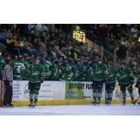Florida Everblades line up for fist bumps