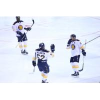 Norfolk Admirals celebrate against Orland