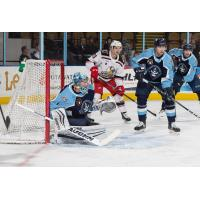 Grand Rapids Griffins test the Milwaukee Admirals defense