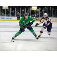 Florida Everblades forward Kyle Platzer against the Greenville Swamp Rabbits