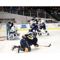 Ben Duffy of the Norfolk Admirals vs. the Orlando Solar Bears