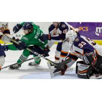 Greenville Swamp Rabbits goaltender Garrett Bartus and his defense try to stop the Florida Everblades