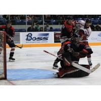 Amarillo Bulls goaltender Justin Evenson mans the crease