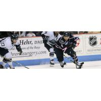 South Carolina Stingrays defenseman Mike Chen vs. the Jacksonville IceMen