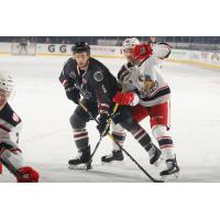 Grand Rapids Griffins battle the Chicago Wolves