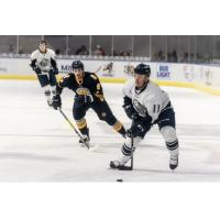 Norfolk Admirals defenseman Chase Harrison (9) closes in on the Jacksonville IceMen