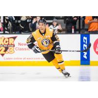 Wheeling Nailers forward Troy Josephs
