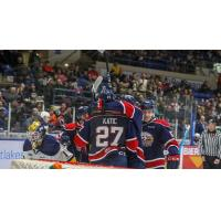 Saginaw Spirit celebrate a goal against the Erie Otters