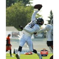 DB Qumain Black in training camp with the Chicago Bears