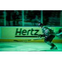 Forward Patrick Bajkov of the Florida Everblades