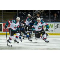 Kelowna Rockets center Kyle Topping (24) corrals the puck against the Victoria Royals