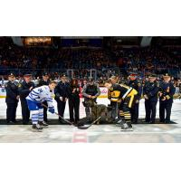 Hamilton Bulldogs and the Mississauga Steelheads