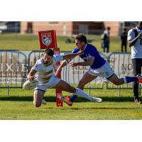 Toronto Arrows move in for a ball against the NOLA Gold