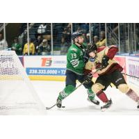 Florida Everblades forward Joe Cox (left) against the Atlanta Gladiators