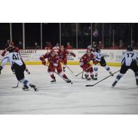 Allen Americans vs. the Idaho Steelheads