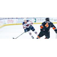 South Carolina Stingrays forward Sam Fioretti vs. the Kansas City Mavericks
