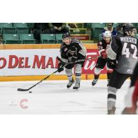 Vancouver Giants defenseman Seth Bafaro against the Prince George Cougars