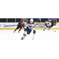 South Carolina Stingrays forward Tim Harrison skates against the Atlanta Gladiators