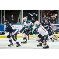 Kelowna Rockets vs. the Kamloops Blazers