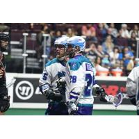 Rochester Knighthawks conference after a goal