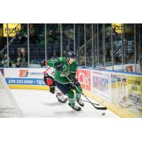 Florida Everblades forward Stathis Soumelidis
