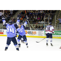 Pensacola Ice Flyers celebrate a goal against the Macon Mayhem