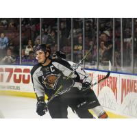 Utah Grizzlies vs. the Kansas City Mavericks