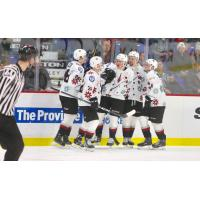 Vancouver Giants celebrate a goal in their Don Cherry jerseys