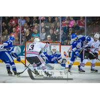 Niagara IceDogs centre Ben Jones pressures the Sudbury Wolves