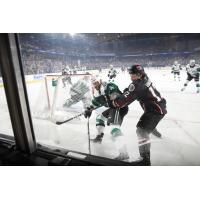 Texas Stars battle the Chicago Wolves