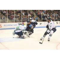 Florida Everblades goaltender Jamie Phillips against the South Carolina Stingrays