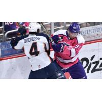 Chad Duchesne of the Greenville Swamp Rabbits tangles with a member of the Orlando Solar Bears
