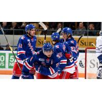 Kitchener Rangers exchange congratulations after scoring against the Mississauga Steelheads